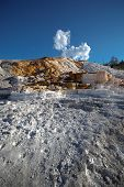 image of mammoth  - A travertine terrace at Mammoth Hot Springs in Yellowstone National Park - JPG