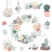 foto of cactus  - Wedding graphic set with succulents - JPG