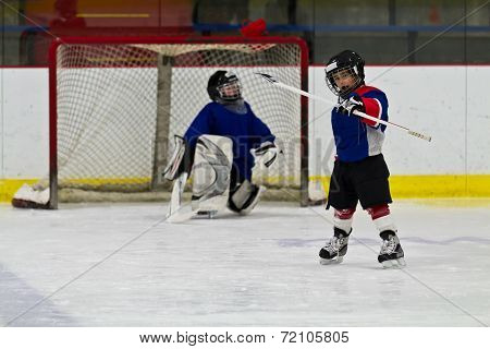 Ice Hockey Player Celebrates After Scoring A Goal