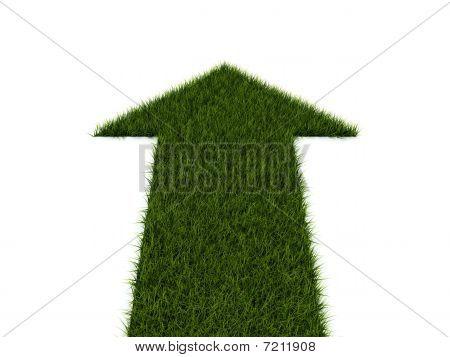 Pfeil aus grünem Gras