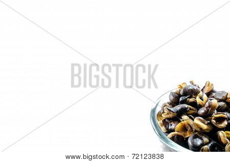 Half Of Fava Bean, Roasted And Salty Background