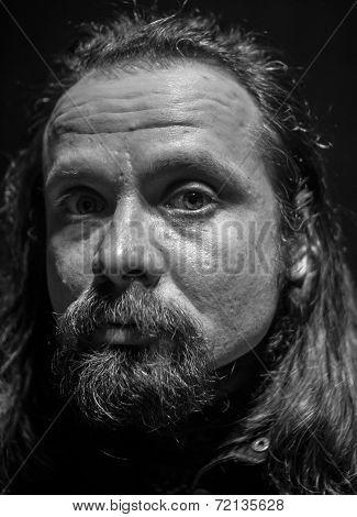 The Renaissance Style Male Portrait