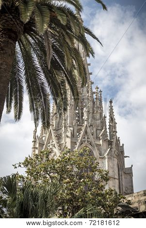 The Steeple Of The Cathedral Of The Holy Cross Hidden Behind A Palm Tree