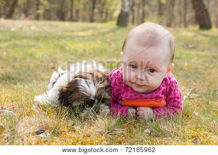 Cute Puppy And Baby In The Park