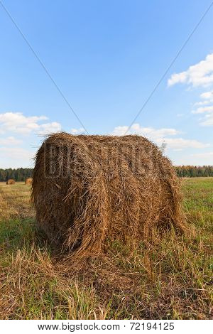 Big Hay Roll On Mowed Field