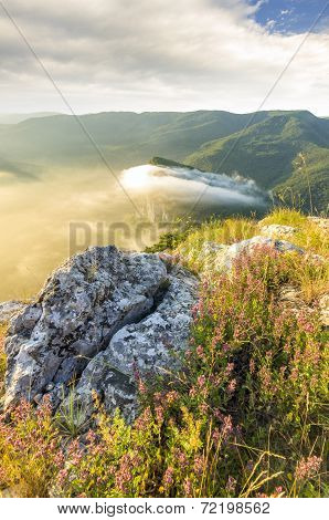 The Stone In The Middle Of The Vegetation On The Top Of The Mountain At Sunset