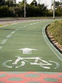 picture of bike path  - urban ciclyng lane bicycle path bike path bike lane - JPG