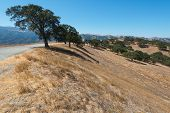 pic of drought  - Dry parched drought stricken hills Livermore California - JPG