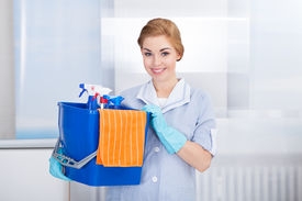 picture of maids  - Happy Young Maid Holding Bucket With Cleaning Supplies - JPG