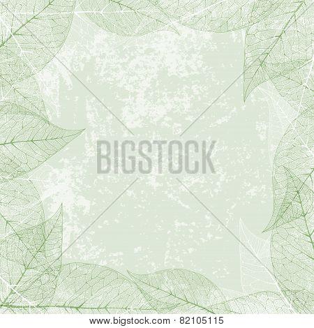 Leaf Frame At Vintage Grunge Background