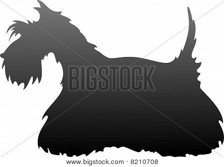 Scottish Terrier silhouette
