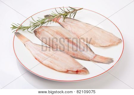 Raw Sole Fish With Rosemary