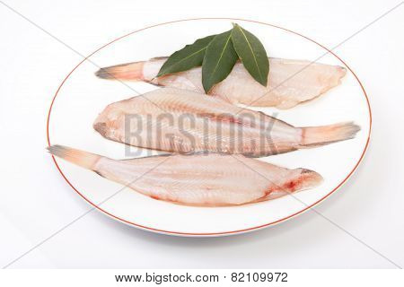 Raw Sole Fish With Bay Branch