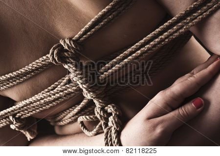 Young Submissive Woman In Japanese Bondage Takate Kote / Bdsm Theme