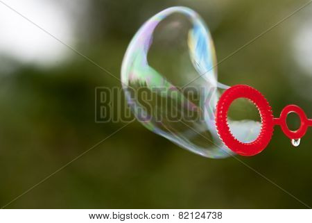 Close Up Of Soap Bubble
