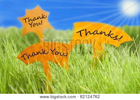 Three Labels With Thank You And Thanks And Blue Sky And Sun