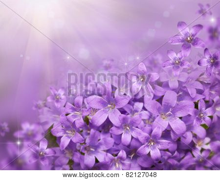 Floral Background With Beautiful Purple Snowdrops