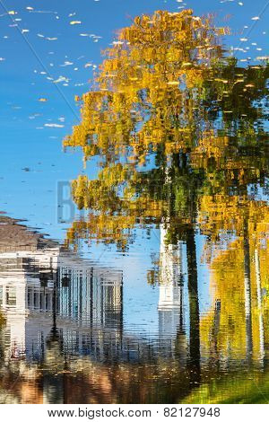 Reflection Of Buildings And Tree In The Autumn Pond In Riga