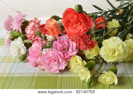 Flowers Carnation