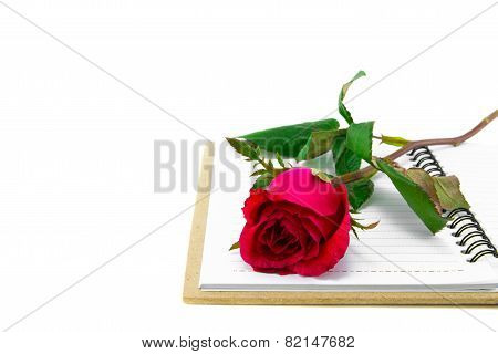 Red roses with book