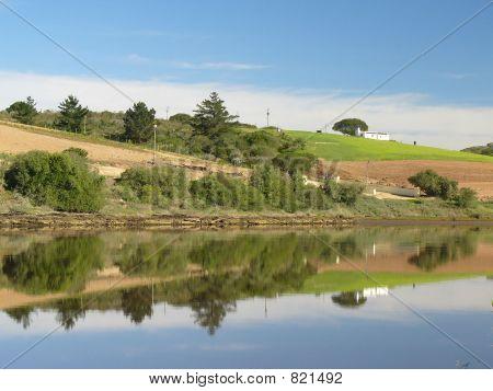 Farmland across the river
