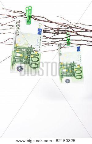 paper money tree
