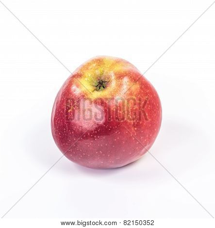 isolated red apple with highlights