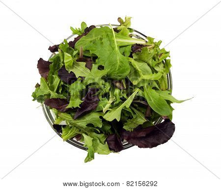 Bowl of a mixture of fresh spring salad