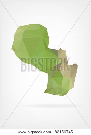 Low Poly map of Paraguay