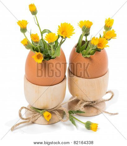 Eggshell With Spring Flowers In Wood Eggcups
