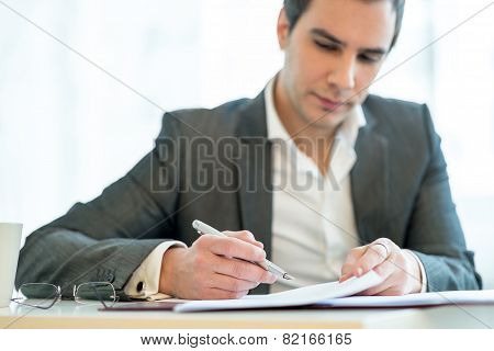 Handsome Businessman Analysing A Report
