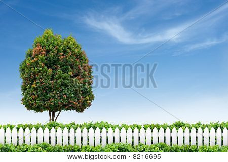 White Fence And Tree On Blue Sky