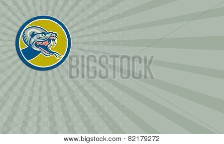 Business Card Rattle Snake Head Circle Retro