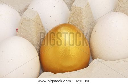 One golden egg in an egg carton