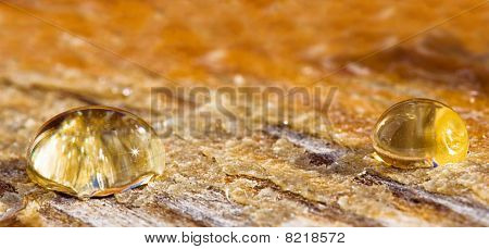 Sunny Drops Of Honey On An Old Wood