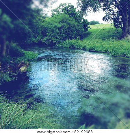 Clean spring water flowing in forest