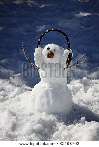 Small Funny Snowman With Headphone