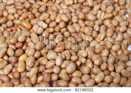 Roasted Soya Bean  Nuts