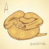 pic of anaconda  - Sketch hipster anaconda in vintage style vector - JPG