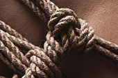 image of shibari  - Detail of rope node on japanese bondage takate kote  - JPG