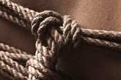 stock photo of shibari  - Detail of rope node on japanese bondage takate kote  - JPG