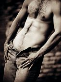 picture of nake  - Naked sexual brawny male torso - JPG