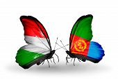 stock photo of eritrea  - Two butterflies with flags on wings as symbol of relations Hungary and Eritrea - JPG
