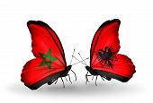 foto of albania  - Two butterflies with flags on wings as symbol of relations Morocco and Albania - JPG