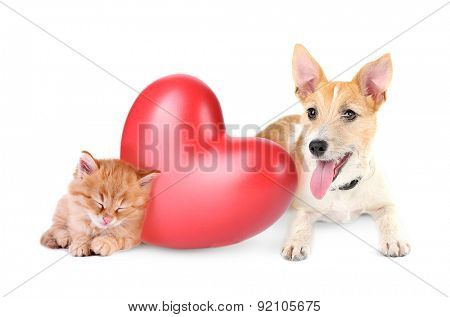 Cat and dog with red heart isolated on white
