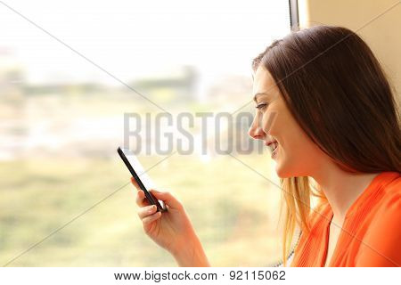 Passenger Using A Mobile Phone In A Train