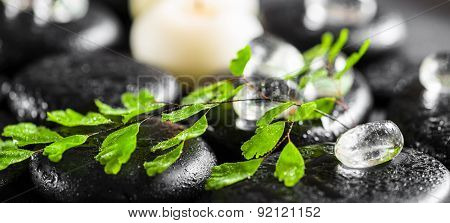 Beautiful Spa Setting Of Green Twig Fern, Ice And Candles On Zen Basalt Stones With Dew, , Panorama