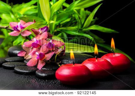 Beautiful Spa Still Life Of Blooming Twig Red Orchid Flower, Phalaenopsis, Bamboo With Dew And Candl