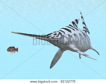 Ichthyosaur Eurhinosaurus