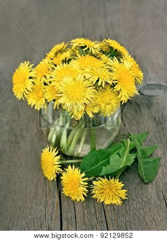 Dandelion Flowers In Vase